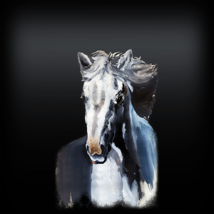Horse Ghost On Black