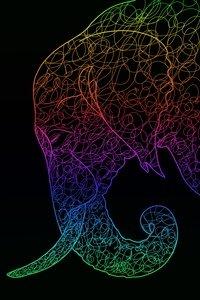 Multicolour Elephant On Black