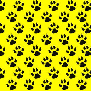 Paw Pattern In Yellow