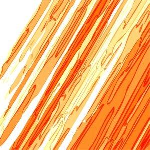 Orange White Storkes
