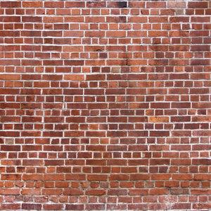 Borwn Bricks Print