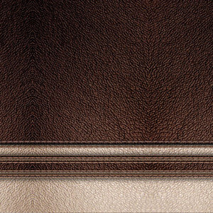 Leather Print With Thread Work