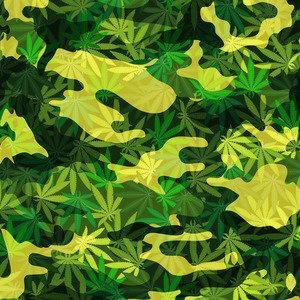 Camouflage Marijuana