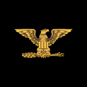 Army Rank Eagle