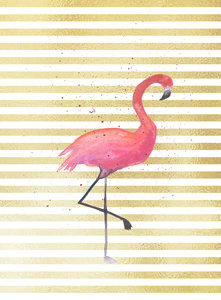 Flamingo And Yellow Gold Stripes