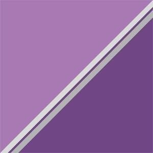 Dual Purple Shades