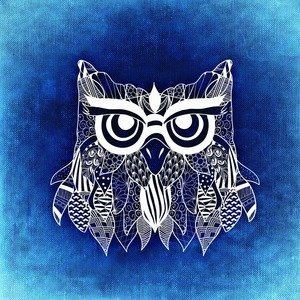 Owl Artwork