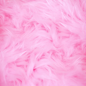 Pink Feathers Print