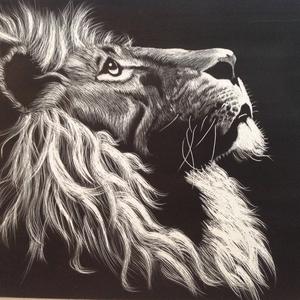Vintage Colors Of Lion