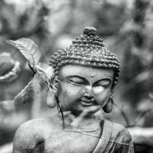 Buddha Asia Yoga Zen Black And White
