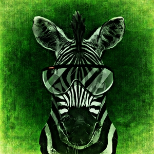 Zebra Hipster Stylish