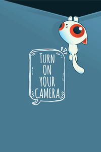 Turn On Your Camera