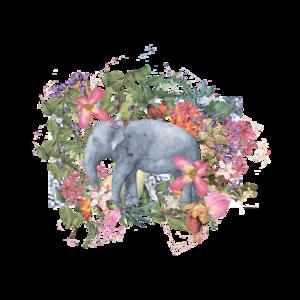Elephant Tropical Illustration