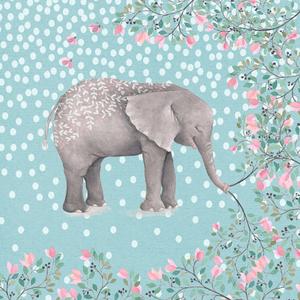 Elephant Animal Tropical Illustration Watercolor