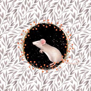Mouse Animal Cute Illustration