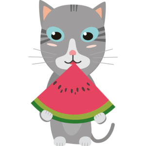 Cat With Melon