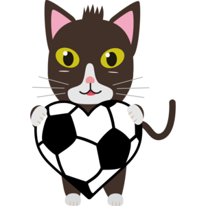 Cat With Football