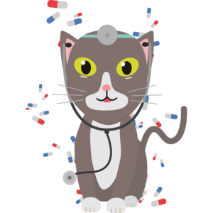 Cat With Medical Equipment