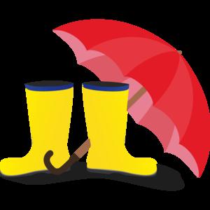 Rubber Boots And Umbrella