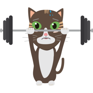 Fitness Cat Weight Lifting