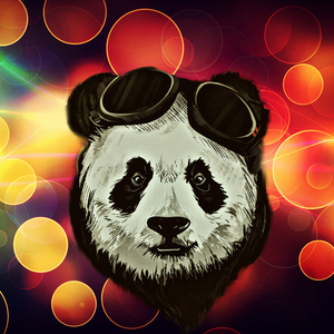 Panda Bear On Colorful Lights