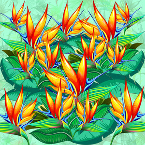 Bird Of Paradise Flower Exotic Pattern