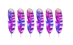 6 Pink Feathers
