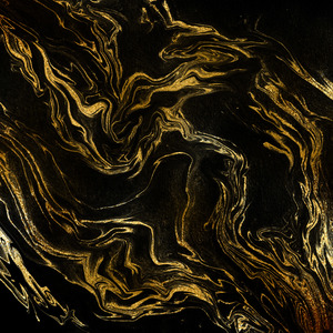 Black And Gold Marble Print 2