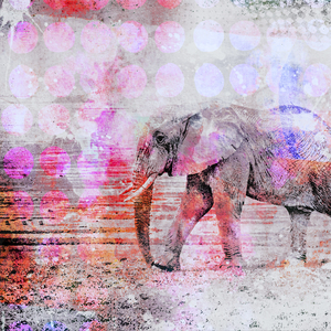 Elephant Colorful Mixed Media Art