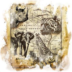 African Wildlife Old Map Animals