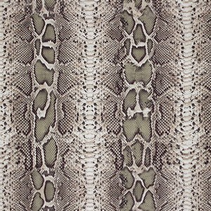Snake Skin Print