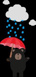 Black Bear With Umbrella