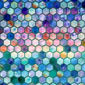 Multicolor Geometric Hexagonal