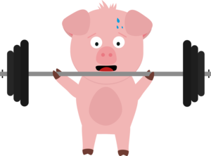 Fitness Pig With Weights