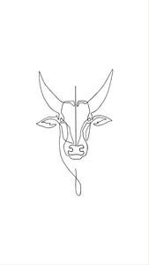 Jallikattu Line Drawing On White