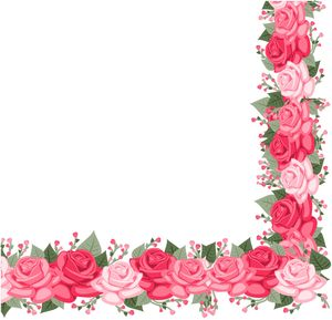 Rose Border With Leaves On White