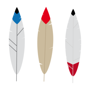 Colorful Feathers 1