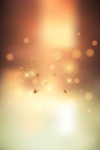Bokeh Butterfly Flying