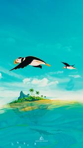 Penguins Flying Over Island