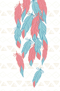 Pink Blue Feathers On Aztec