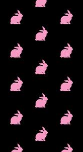 Bunnies Black