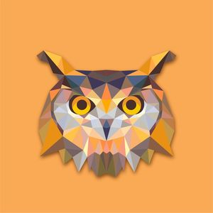 Triangle Owl Pattern