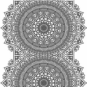 Ornamental Design On White 2