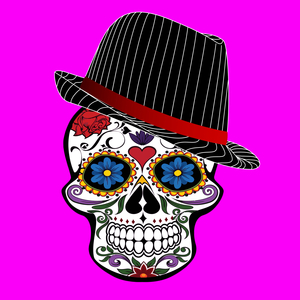 Hipster Modern Skull On Pink