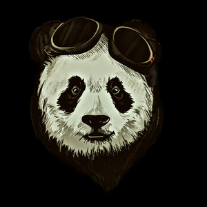 Hipster Panda Bear On Black
