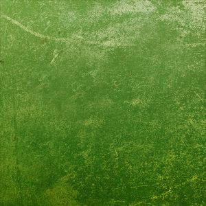Lawn Green Print
