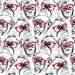 Chimpanzee Moods