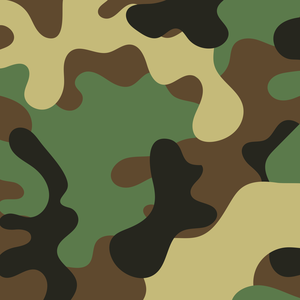 Indian Army Camouflage 2