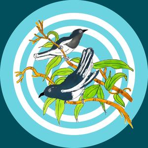 Cute Birds On Blue Circles