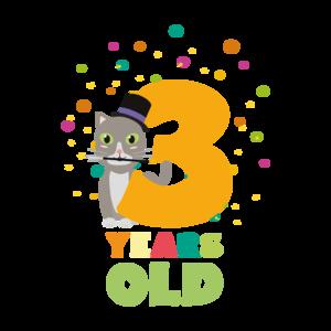 Three Years Third Birthday Party Cat